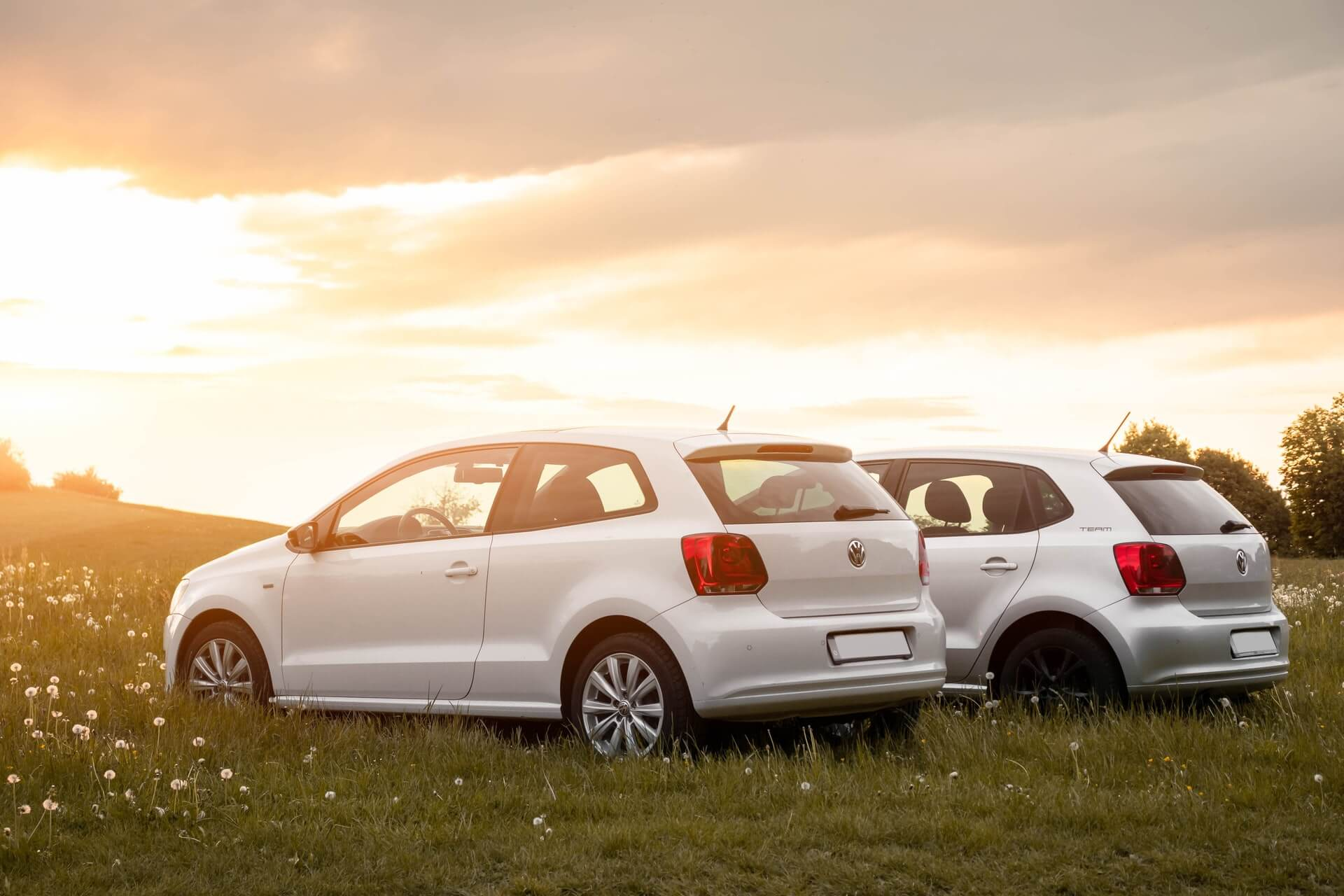 Identical cars with different wheels parked in a field